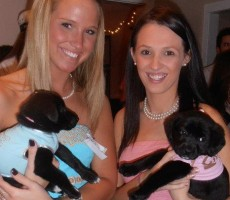 Puppies and Pearls. TSM.