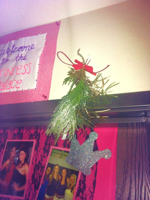 Mistletoe above our door in the house. TSM.