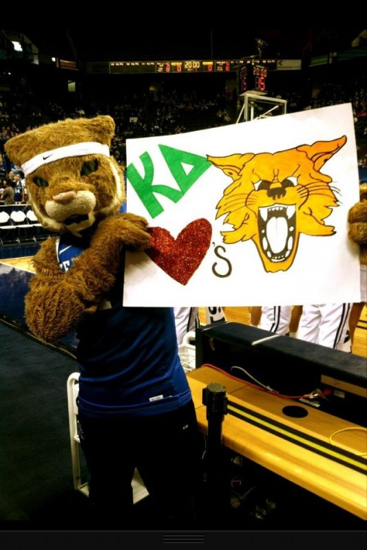 KD loves the Cats! TSM.