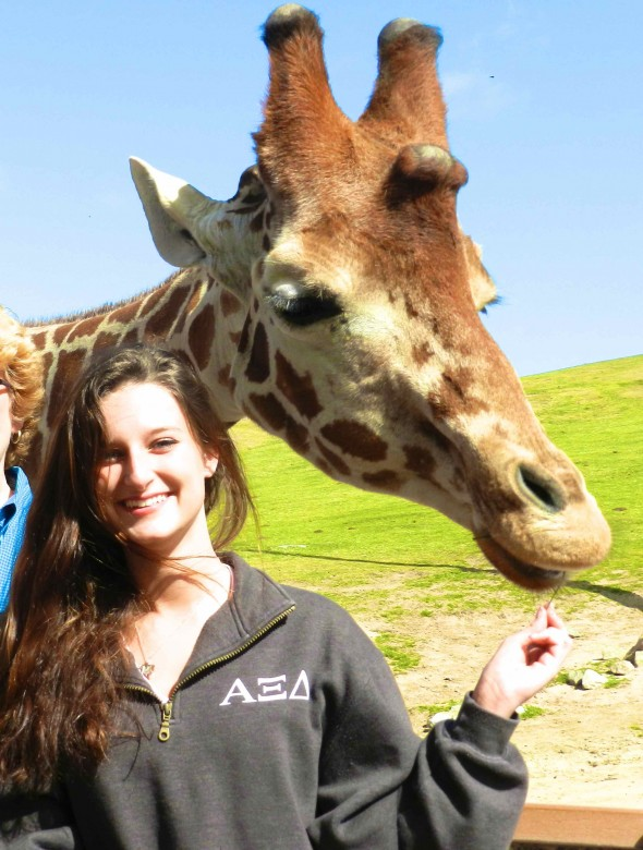 Casually feeding a giraffe. TSM.