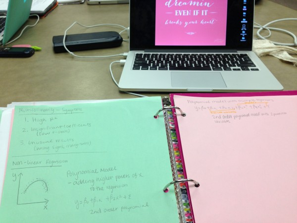 Eco Stats notes in sorority colors. TSM.