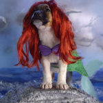 Here's An Epic Rendition Of All Your Favorite Disney Characters As Puppies