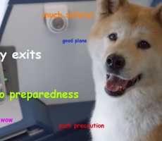 Delta Airlines Just Brought Internet Memes To Life in Their New Ad