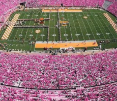 Zeta Wants Everyone To Wear Pink To The UT Game Saturday