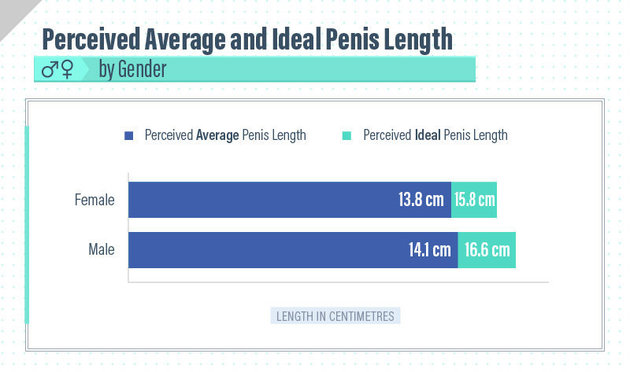 Perceived Avg and Ideal Penis Length