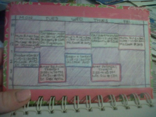 My color-coordinated schedule in my Lilly planner. TSM.