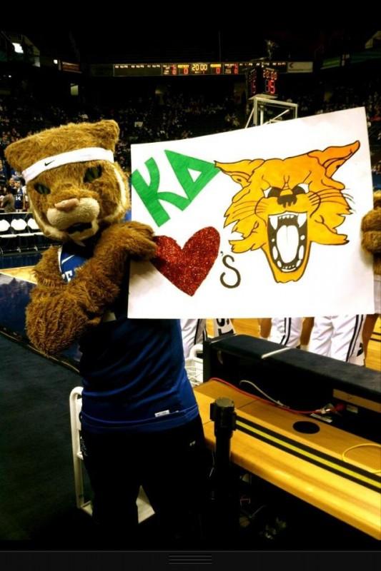 KD loves the Cats! TSM.