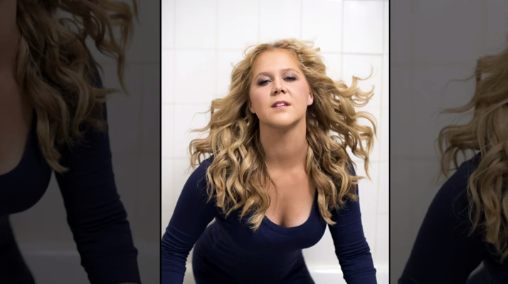 "Amy Schumer ""Fat"""