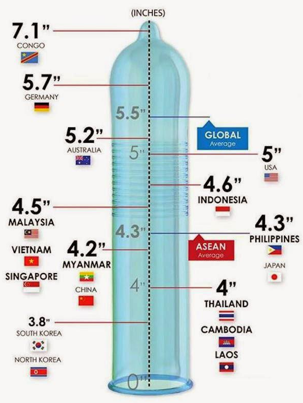 average penile size in america